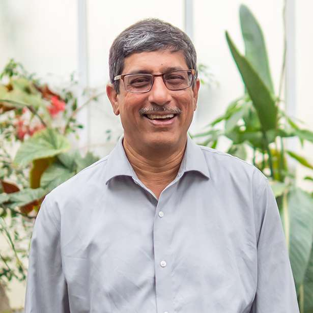 Portrait photo of Abhijit Padte, Maths Teacher at Brockwood Park School
